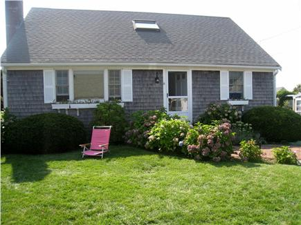 Harwichport Cape Cod vacation rental - Pretty hydrangea bushes