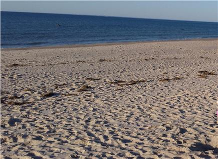 Brewster Cape Cod vacation rental - Beautiful Cold Storage Beach is just a mile away