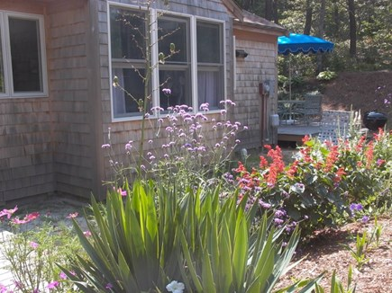 Wellfleet Cape Cod vacation rental - Front garden and side deck.