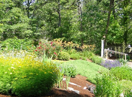 Wellfleet Cape Cod vacation rental - House surrounded by gardens and privacy