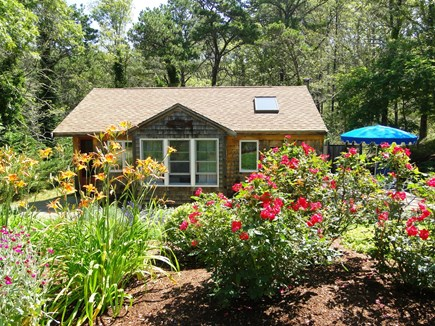 Wellfleet Cape Cod vacation rental - Gorgeous garden at cottage entrance.