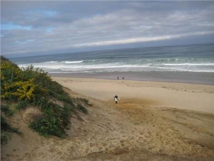 Wellfleet..adjacent to Bike Tr Cape Cod vacation rental - Bike to ocean beach in less than 10 minutes on the Rail Trail
