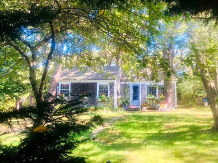 Wellfleet..adjacent to Bike Tr Cape Cod vacation rental - Beloved  by guests and consistently rated five stars