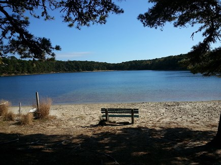 S. Chatham Cape Cod vacation rental - our favorite fresh water beach