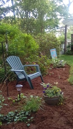 South Dennis Cape Cod vacation rental - Nicely landscaped yard