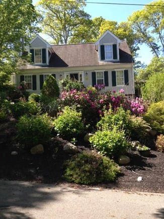 Mashpee Cape Cod vacation rental - view from road