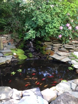 Mashpee Cape Cod vacation rental - Relaxing koi pond and waterfall in backyard