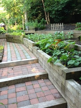 Mashpee Cape Cod vacation rental - Fresh vegetable and herb gardens for your culinary pleasure