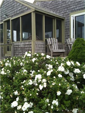 South Wellfleet Cape Cod vacation rental - Private screened in porch and deck overlook the beautiful views