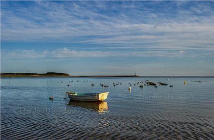 Wellfleet Cape Cod vacation rental - Powers landing beach (.10 mi)