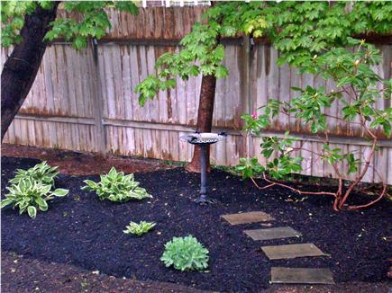 Centerville, craigville Centerville vacation rental - Back yard also a play area off to the side