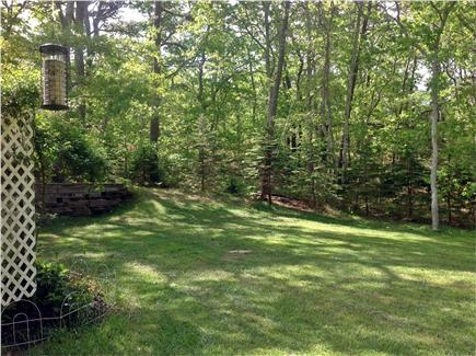 Brewster Cape Cod vacation rental - Surrounded by woods