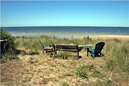 Brewster Cape Cod vacation rental - Read a book on the bluff