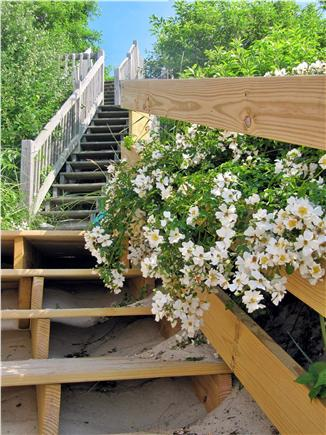 Brewster Cape Cod vacation rental - Stairs to beach