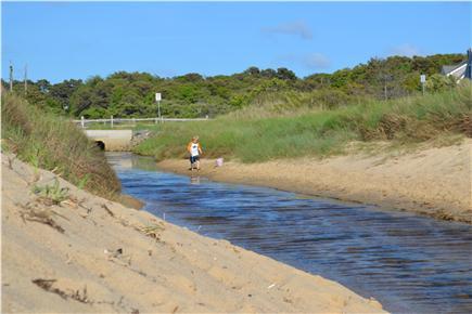 Eastham Cape Cod vacation rental - Cole Road Beach 2/10 mile walk
