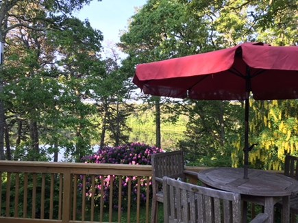 Chatham Cape Cod vacation rental - Outdoor raised deck with beautiful pond view