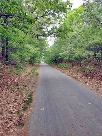 Eastham Cape Cod vacation rental - Rail Trail bike path