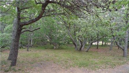 Eastham Cape Cod vacation rental - Play Outside!