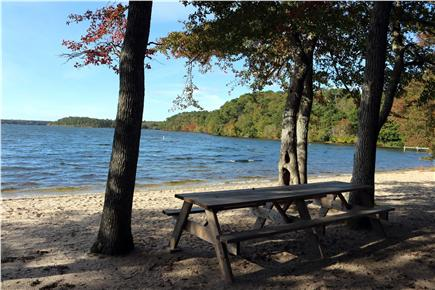 Brewster Cape Cod vacation rental - The private beach on Long Pond. (67 steps away from house)