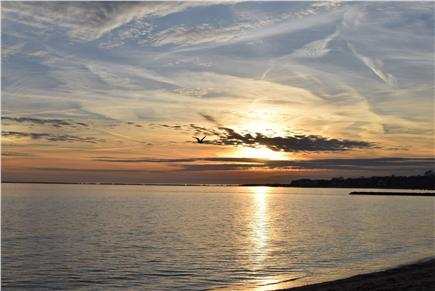 Barnstable, Coast of Hyannis Cape Cod vacation rental - This is a typical evening sunset on your beach! Amazing!