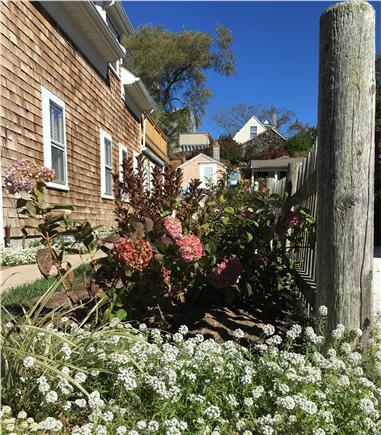 Provincetown Cape Cod vacation rental - ID 25842