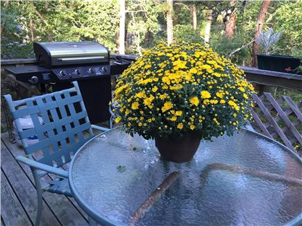 Eastham Cape Cod vacation rental - Back deck off kitchen/DR for leisurely breakfasts