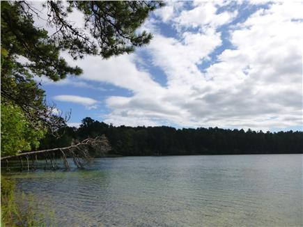 Wellfleet Cape Cod vacation rental - Dyer Pond is great for swimming, a ten minute walk from house