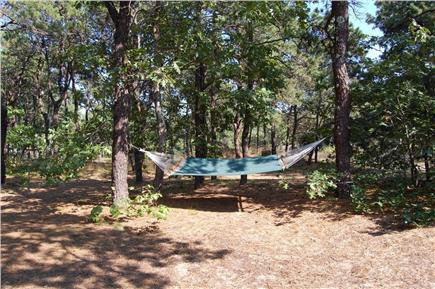 Eastham Cape Cod vacation rental - Large wooded lot