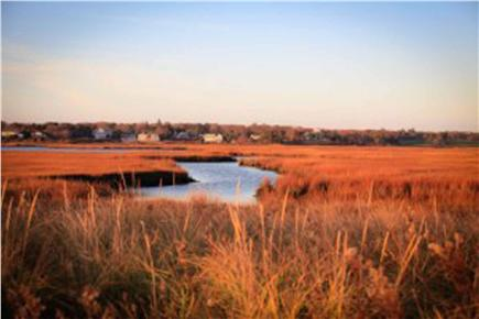 West Yarmouth Cape Cod vacation rental - Fall on Cape Cod from the web.