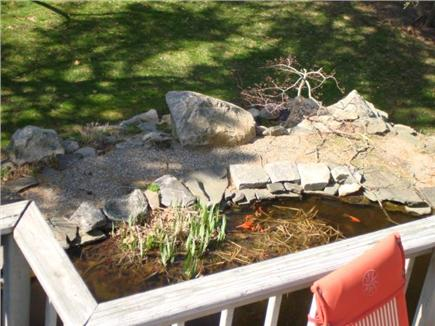 Wellfleet Cape Cod vacation rental - Goldfish pond viewing from the deck
