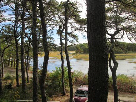 Wellfleet Cape Cod vacation rental - View of the Marsh