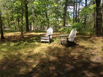 Wellfleet Cape Cod vacation rental - Nice Wooded Lot
