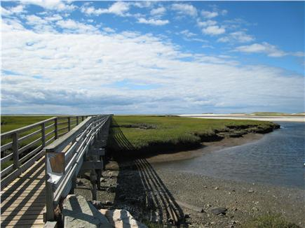 Yarmouth Port Cape Cod vacation rental - Walk to Grays Beach--trails are behind the property!
