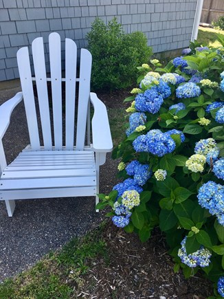Dennis Cape Cod vacation rental - Relax after a fun day at the beach !