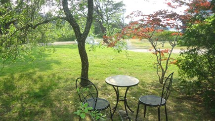 North Chatham Cape Cod vacation rental - Tea Table and Mom's Red Maple - 2017