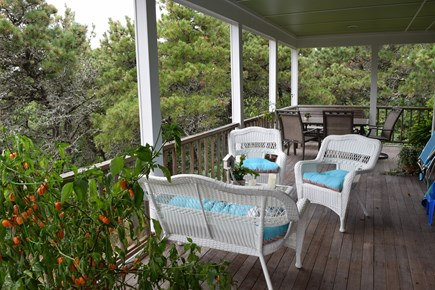 Truro Cape Cod vacation rental - Sit at the treetops,view nothing but nature.