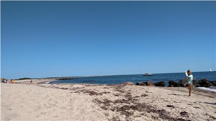 Falmouth, Menauhant Cape Cod vacation rental - Private beaches with no crowds - ever. Swimming, beach walking