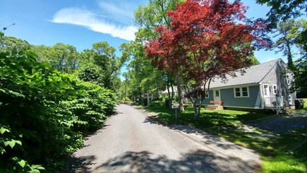 South Yarmouth Cape Cod vacation rental - Quiet dead end street