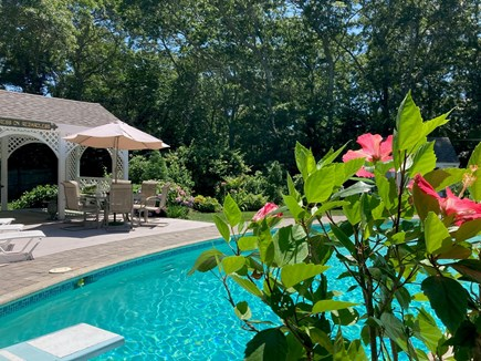 Dennis Village Cape Cod vacation rental - Poolside Pavilion in wooded and garden setting