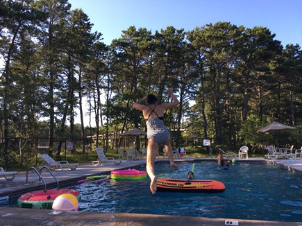 Wellfleet, Wellfeet Cape Cod vacation rental - Brand new swimming pool - only 50 yards away from cottage