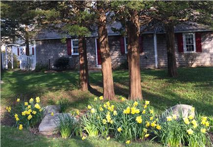Orleans Cape Cod vacation rental - ID 26296