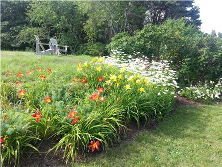 Harwich Port Cape Cod vacation rental - Yard