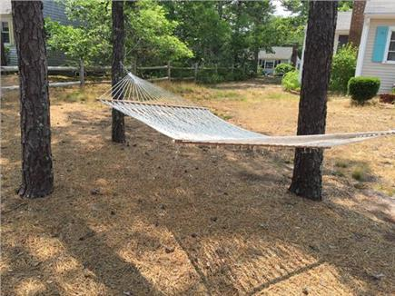 Dennis Port Cape Cod vacation rental - Hammock in the pines