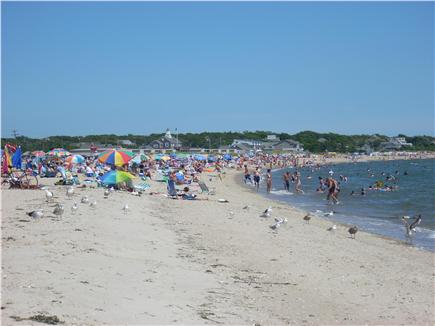 Centerville Centerville vacation rental - Take me out to the crowd.  Free Beach Parking Pass!