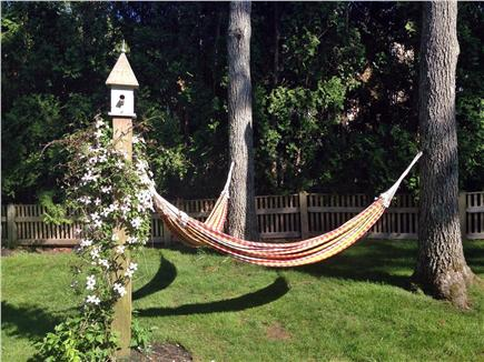 Sagamore Beach Sagamore Beach vacation rental - Large, private backyard with hammocks, outdoor shower and garden