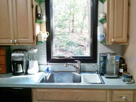 Eastham Cape Cod vacation rental - A woodland view from the kitchen