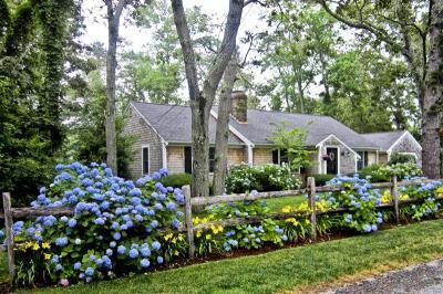 Yarmouthport Cape Cod vacation rental - Front Yard and House