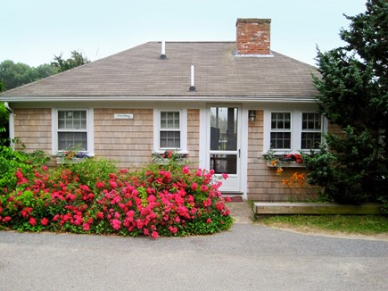 South Chatham Cape Cod vacation rental - A small cottage with a big view on a quiet lane.