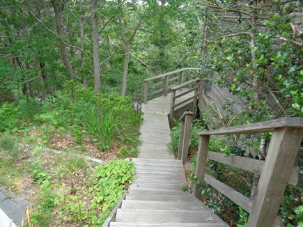 Wellfleet Cape Cod vacation rental - Its like being in a massive tree house!