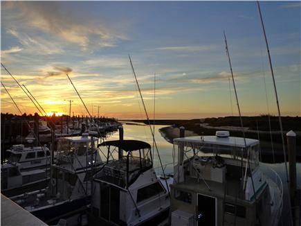 Orleans-.3 mile from Harbor Cape Cod vacation rental - Rock Harbor